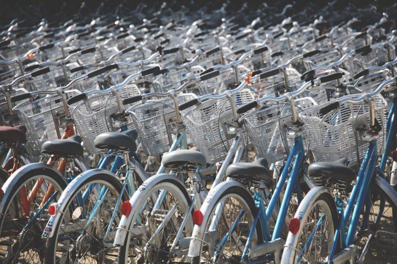 自転車たくさん